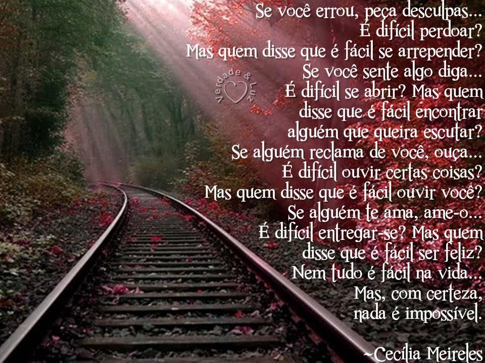 Frases E Imagens De Desculpas P 3: Se Você Errou, Peça Desculpas./Cecília Meireles