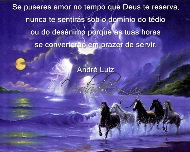 PRAZER DE SERVIR ANDRÉ LUIZ