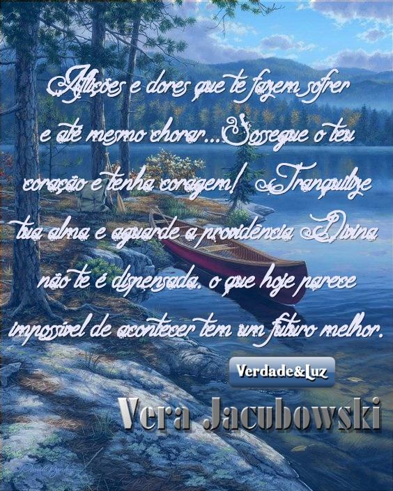 aflições VERA JACUBOWSKI