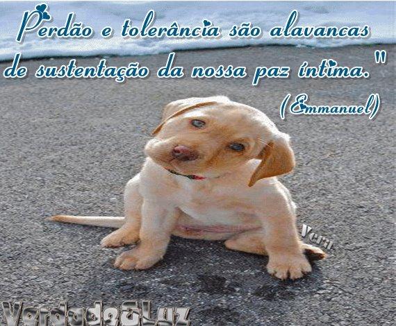 PERDÃO E TOLERÂNCIA EMMANUEL