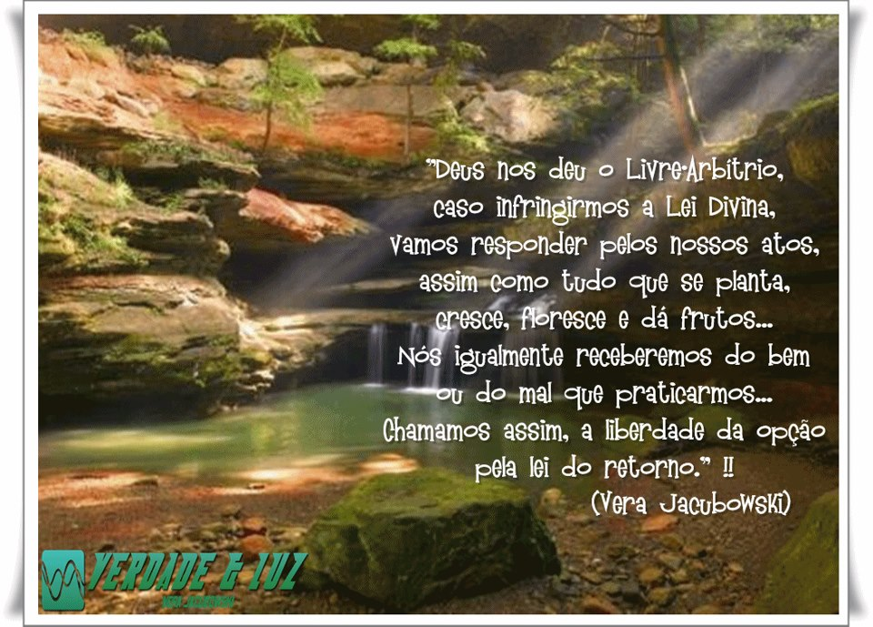 livre arbítrio vera jacubowski 7