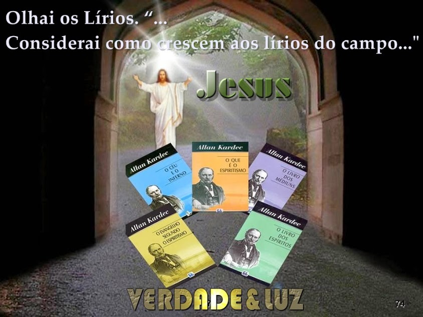 OLHAI OS LÍRIOS JESUS