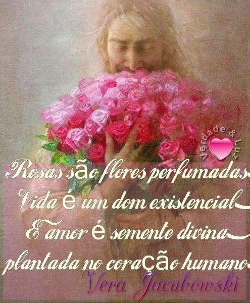rosas são flores perfumadas