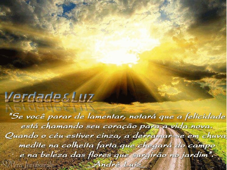 COLHEITA FARTA ANDRÉ LUIZ