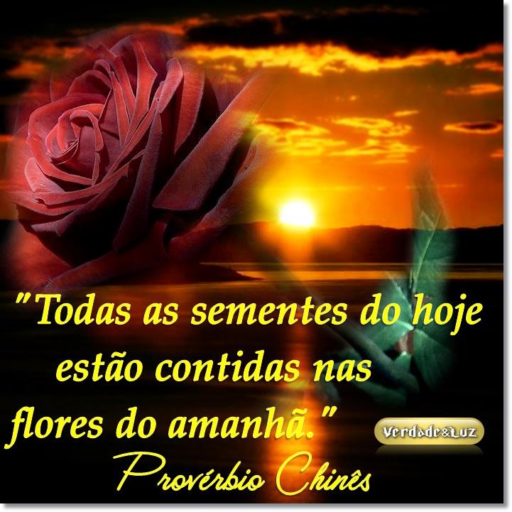 FLORES DO AMANHÃ