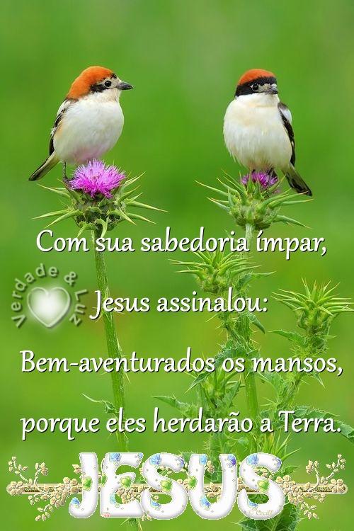 bem aventurados os mansos jesus