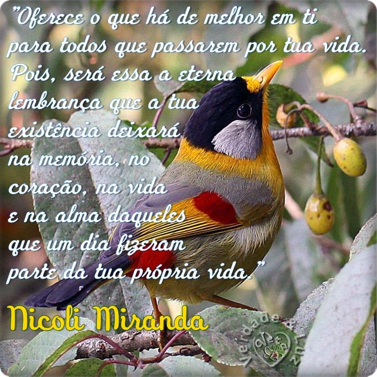 MELHOR DE TI