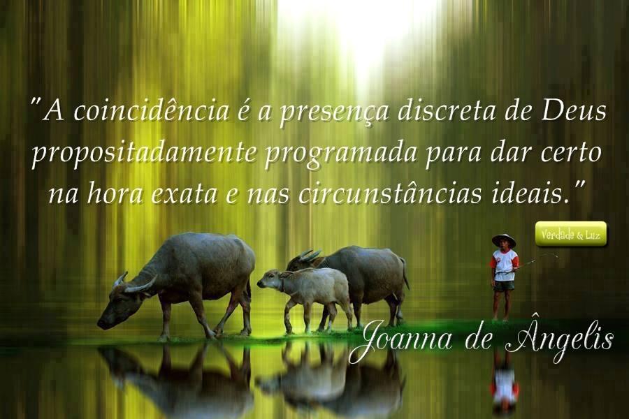 CIRCUNSTÂNCIAS IDEAIS JOANNA DE ÂNGELIS