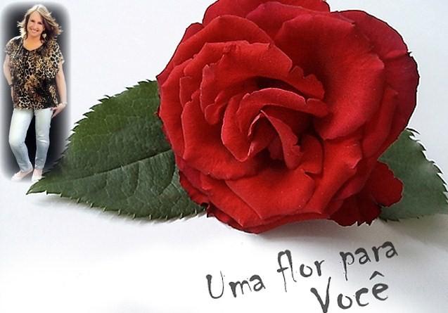 flores para você vera jacubowski