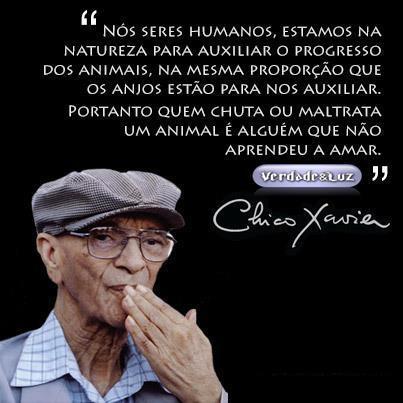 PROGRESSO DOS ANIMAIS