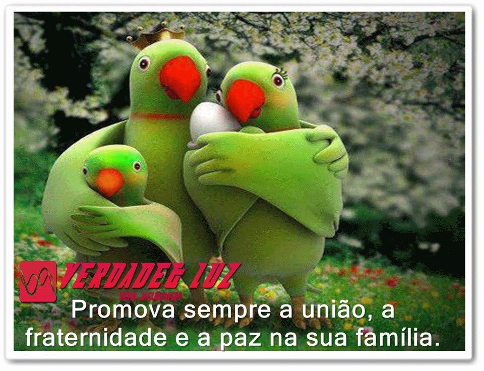 paz e família