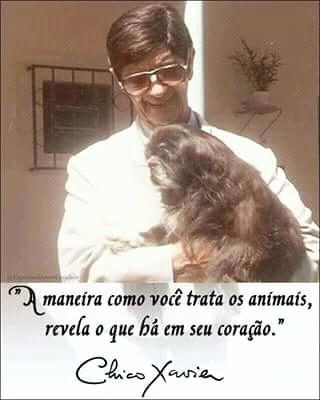 ANIMAIS CHICO XAVIER