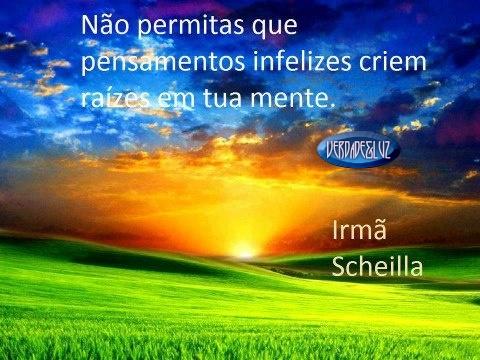 RAÍZES SHEILLA