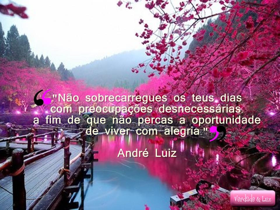 VIVER COM ALEGRIA ANDRÉ LUIZ