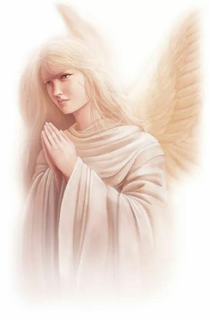 anjo estelar