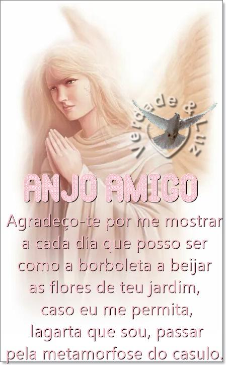 anjo amigo