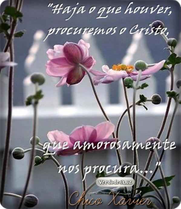 AMOROSAMENTE