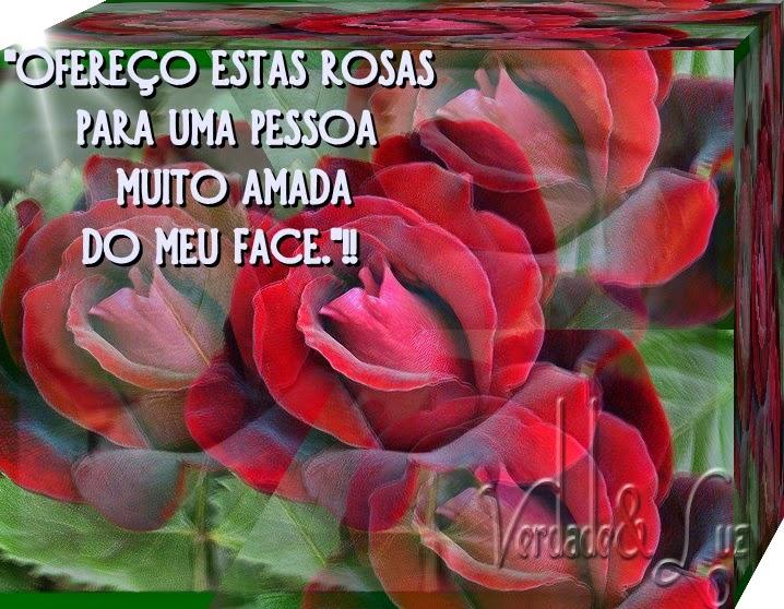 rosas amada