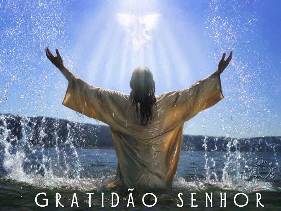 GRATIDÃO SENHOR