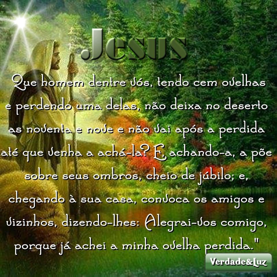 ovelhas jesus