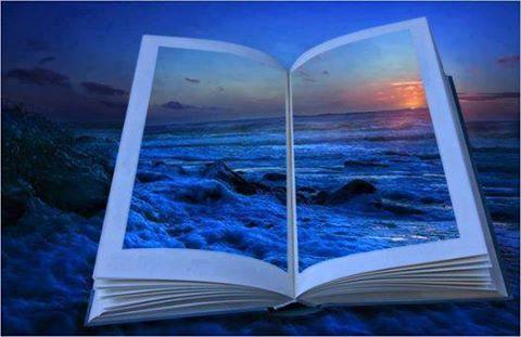 azul livro