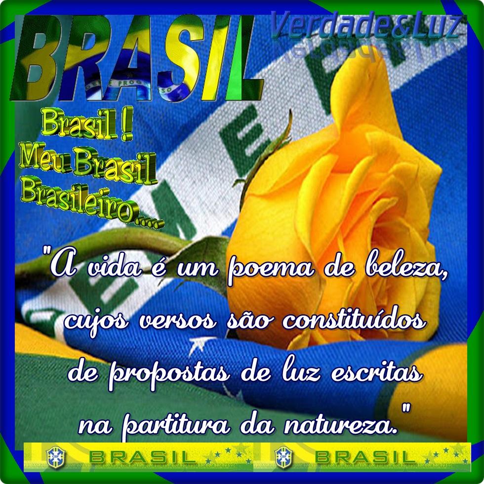 BRASIL PROPOSTAS DE LUZ