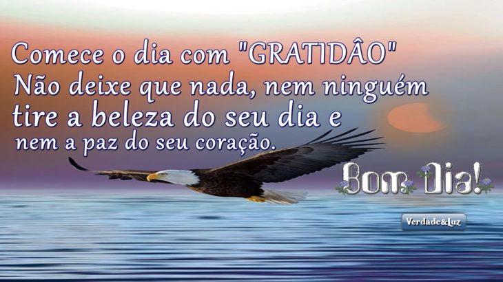 bom dia gratidão a vida